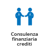 icone_business_consulenza