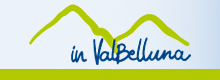 vALBELLUNA NEW X HOME