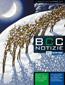 BCC Notizie Nov 2013 copertina ICO