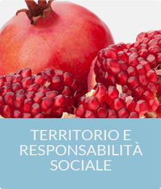 roma territorio e resposabilitæ#224; sociale