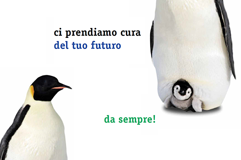 banner pinguini
