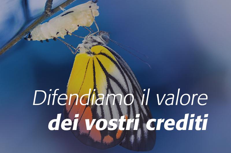 banner crediti home