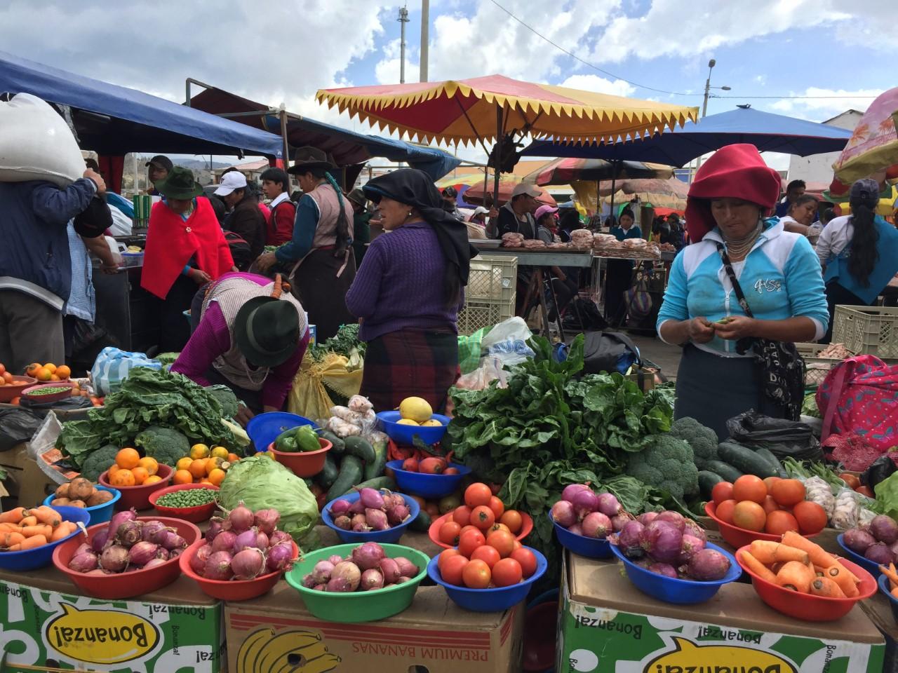 Ecuador, sostegno ai piccoli produttori cooperativi