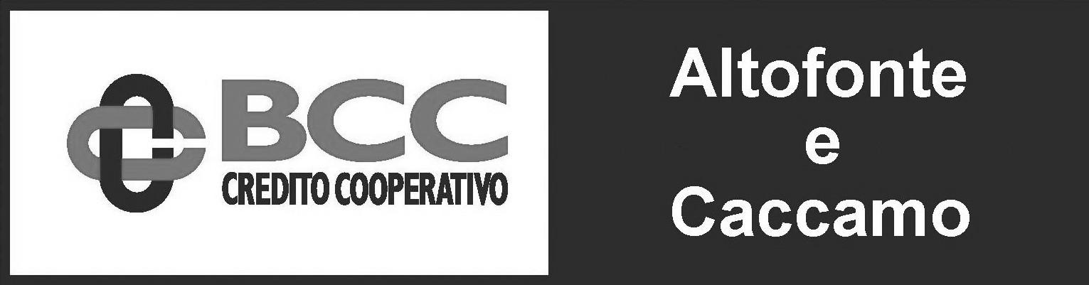 logo grigio bcc